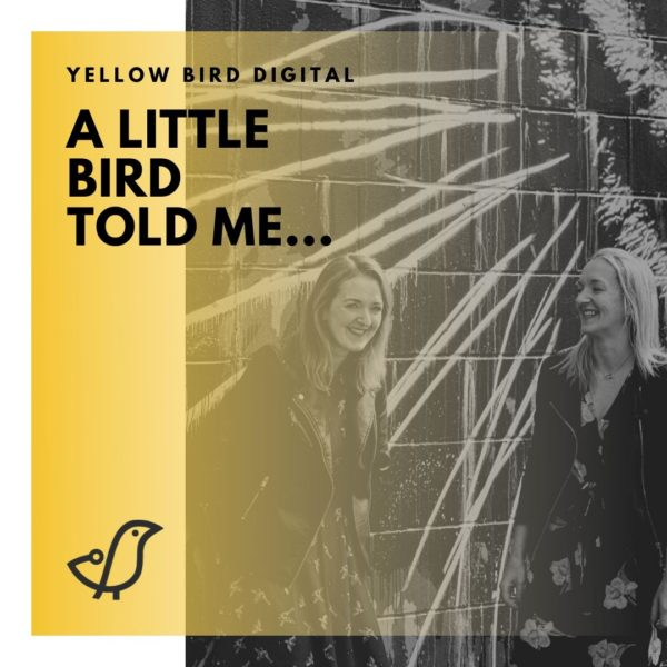 Yellow Bird Digital Consultancy Session